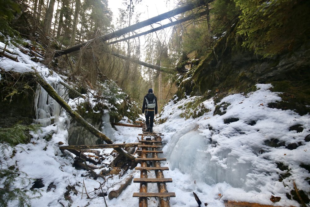 Ollie hiking on the wooden ladders of Slovak Paradise National Park in winter.