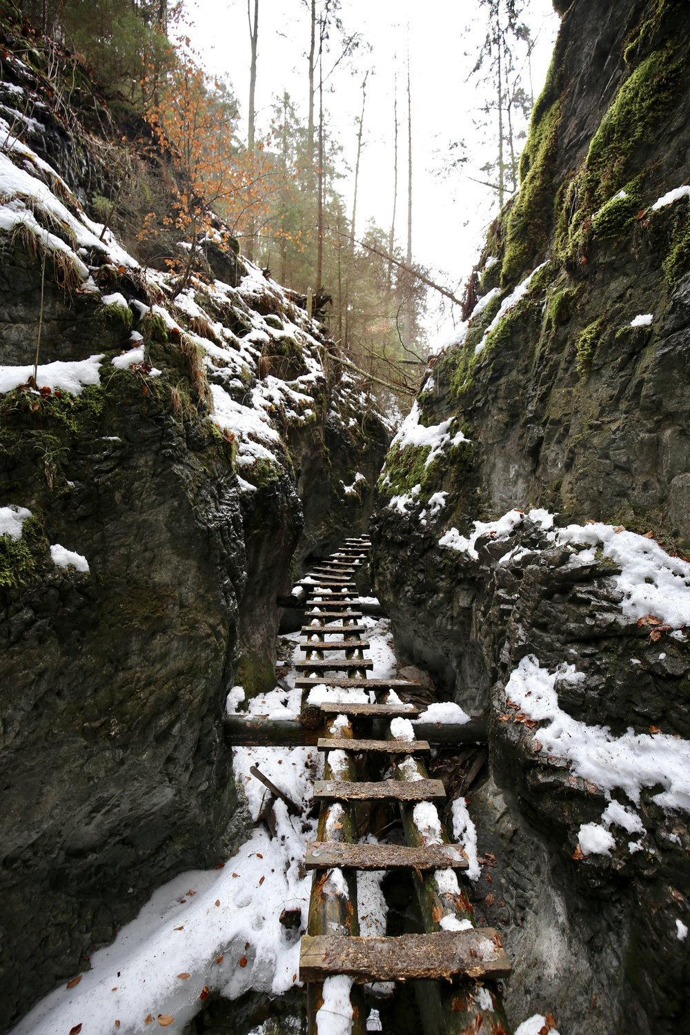 Wooden ladders lead through narrow canyons, cut by a frozen river.