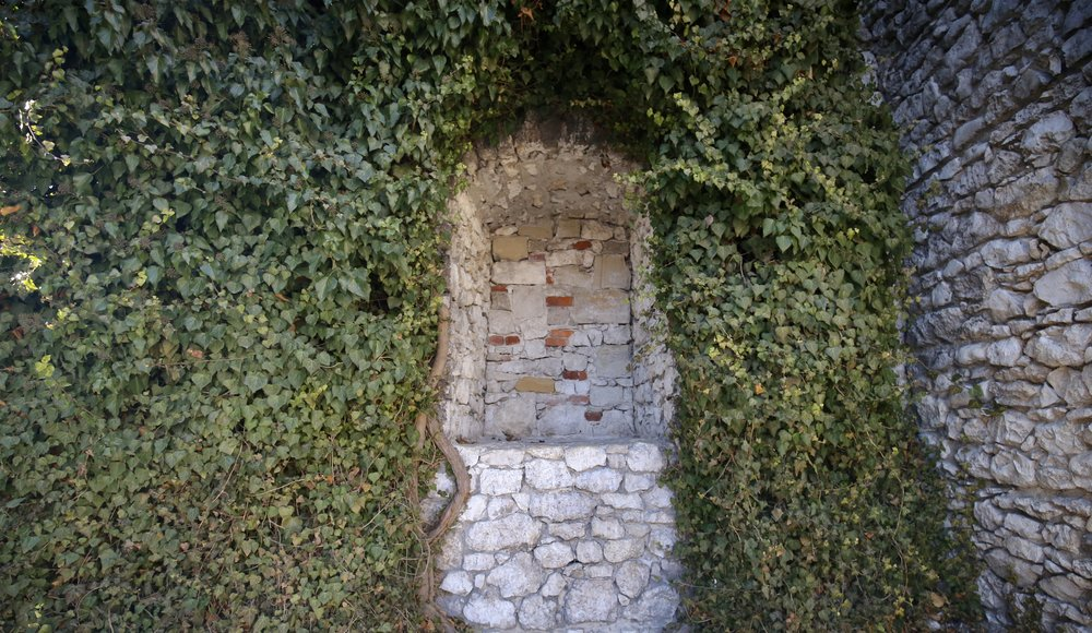 Ivy in a hollow of a stone wall - romantic castle details at Wawel Castle.