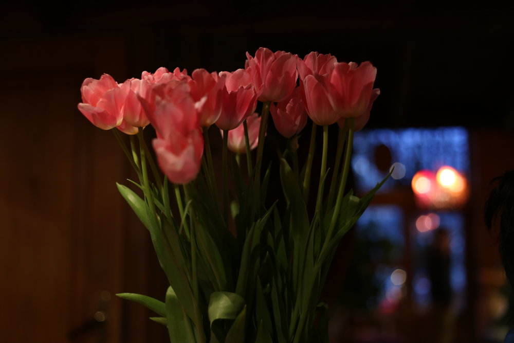 Tulips in a low lit homely bakery, full of love.