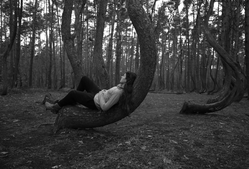 Sitting in the crook of a crescent shaped tree trunk - the Crooked Forest of Poland.