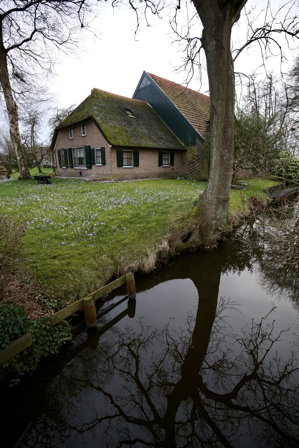 Beautiful reflections of winter in the canals of Giethoorn village - a water borne village.