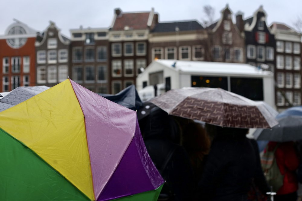 Umbrellas on a rainy day in Amsterdam