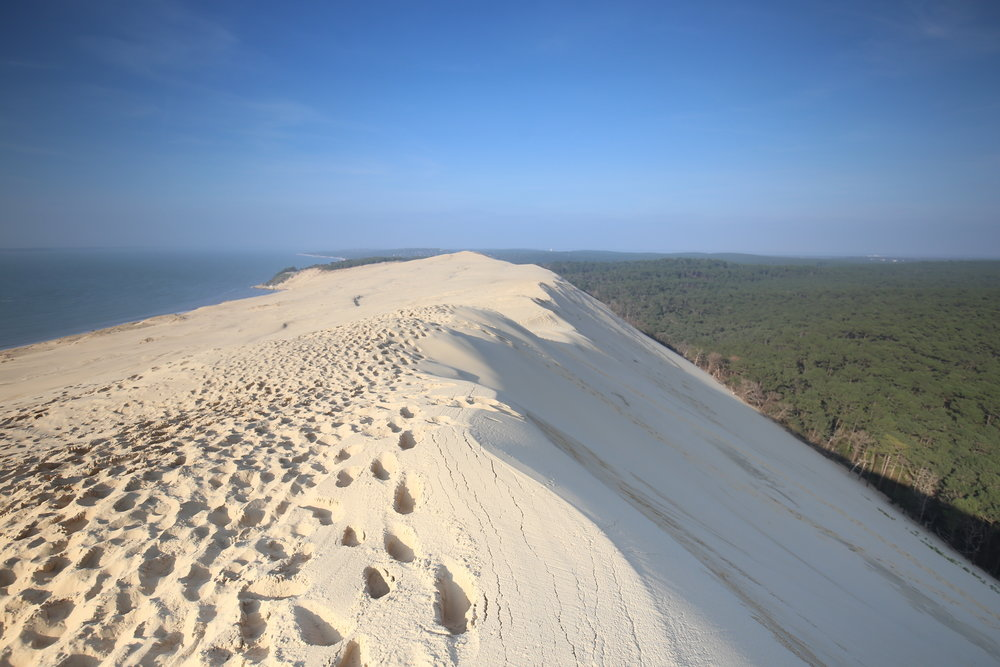 The top edge of the Dune du Pilat, looking over the forest and the sea on either side.