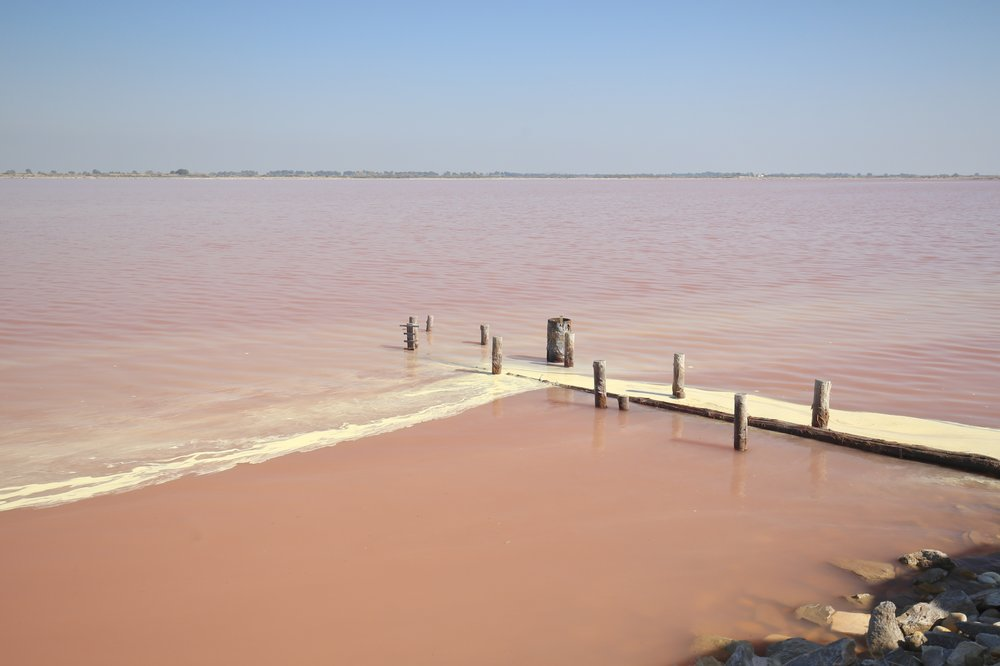 The pink waters of Salins du Midi, with a pier.