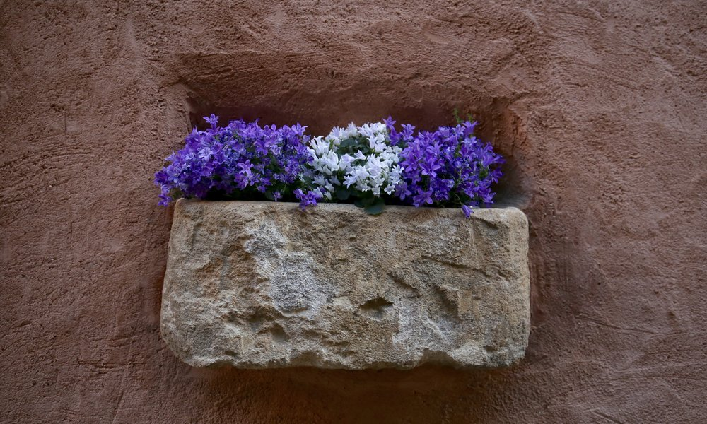 White and purple flowers in a pink stone wall hanging.