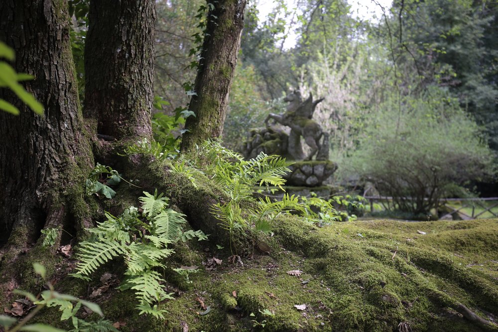 An old medieval pegasus fountain amongst ferns and forest.