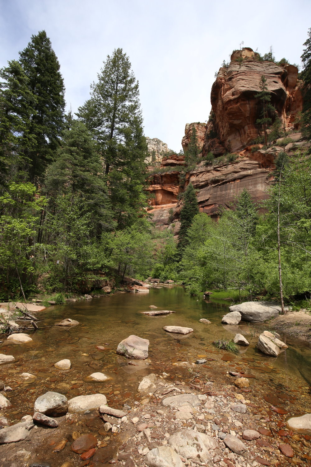The beautiful Oak Creek Canyon, as we hike the West Fork trail, Sedona.
