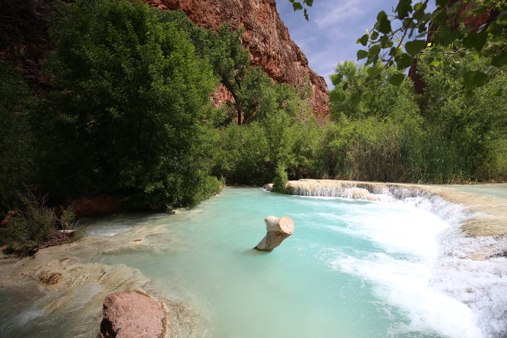 The milky blue waters of Havasupai, where you can swim in mermaid pools.