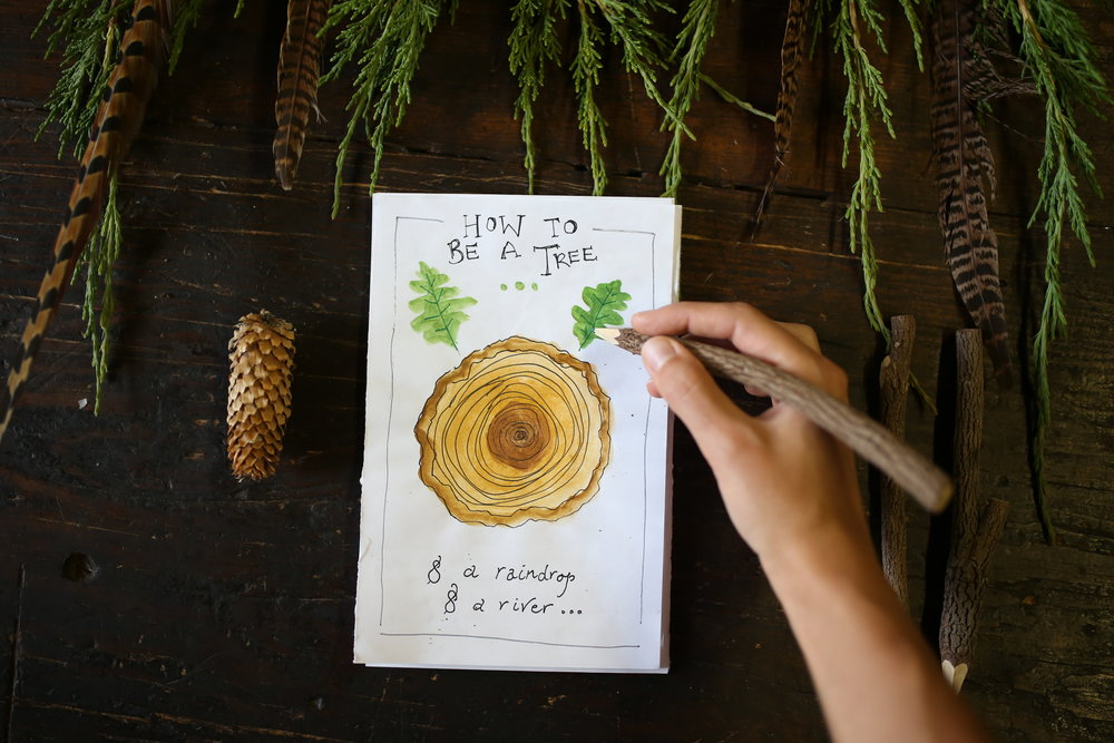 hand painted botany booklet