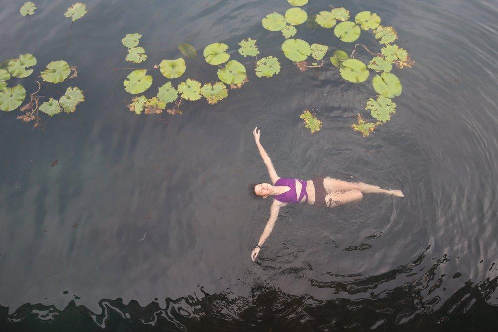 Ophelia - floating amongst waterlily pads in Lake Hévíz, Hungary.