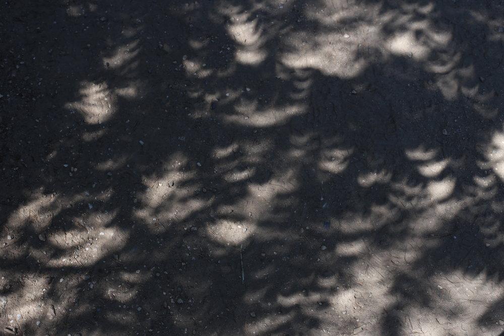 eclipse moon shadows