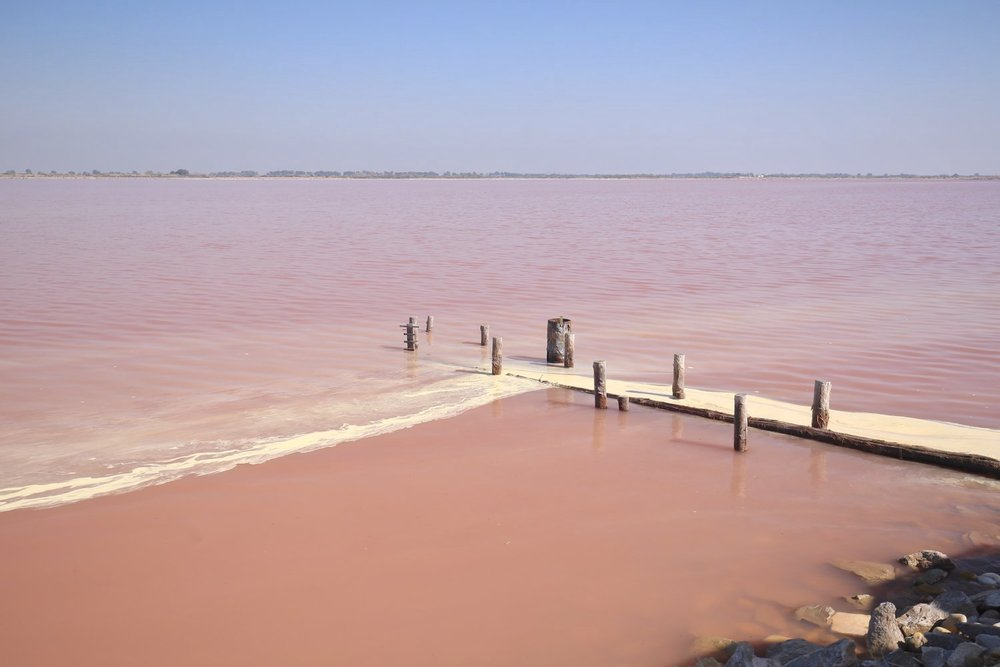 PINK WATERS