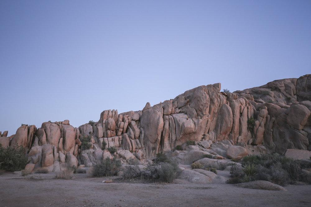 joshua-tree-national-park