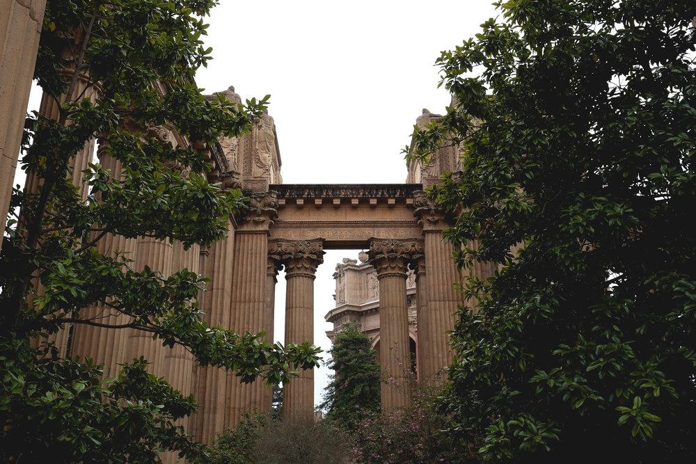roman-columns-green-branches