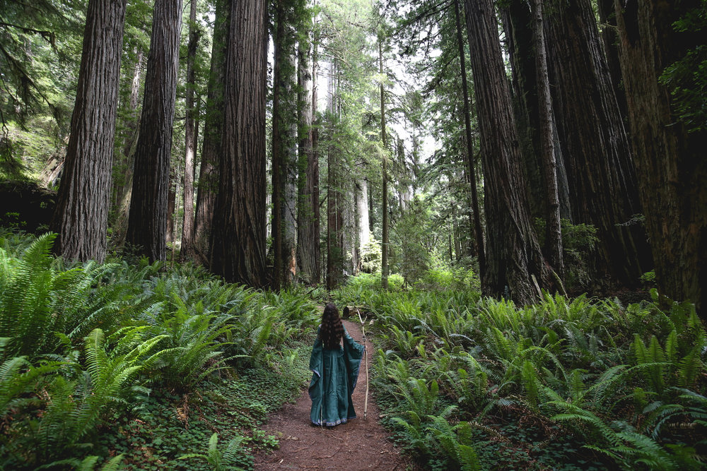 wood-elf-photoshoot-redwoods