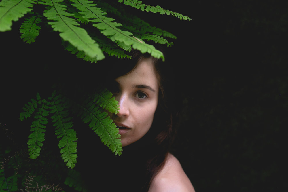 ferns-and-moss-portrait