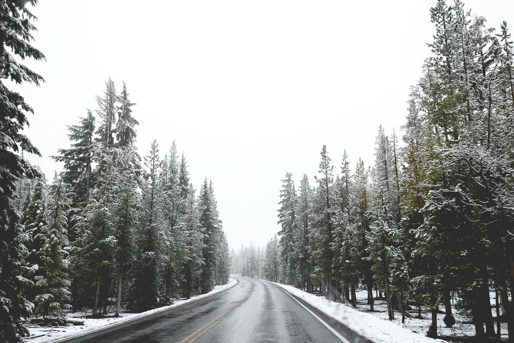 snowy-forest-road-crater-lake