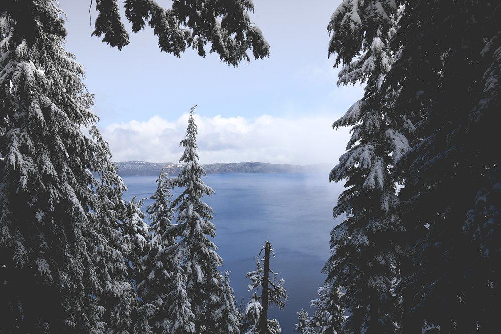 glimpse-lake-through-trees