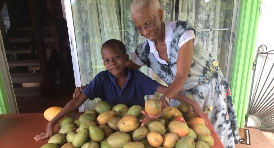 mercy and mangoes.jpg