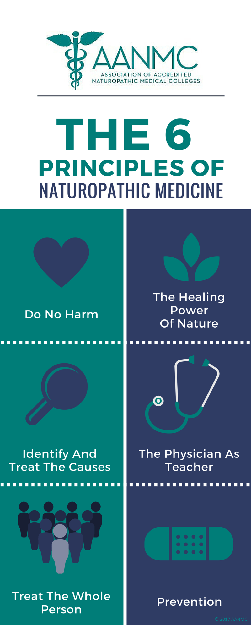 6-principles-of-naturopathic-medicine.png