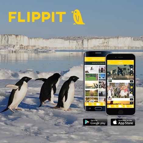 Flippit_App_Launch_Post.jpg