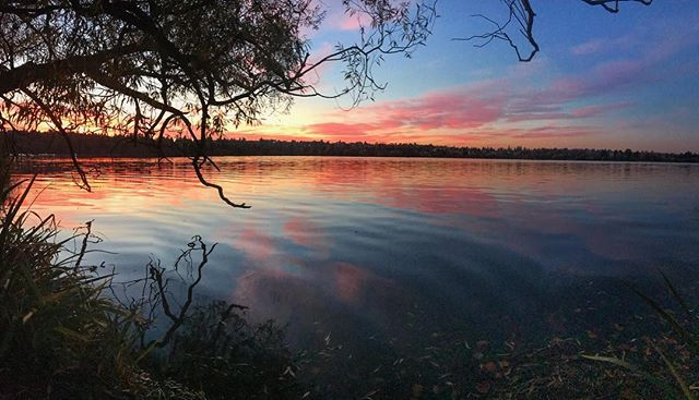 Green Lake sunsets ✨