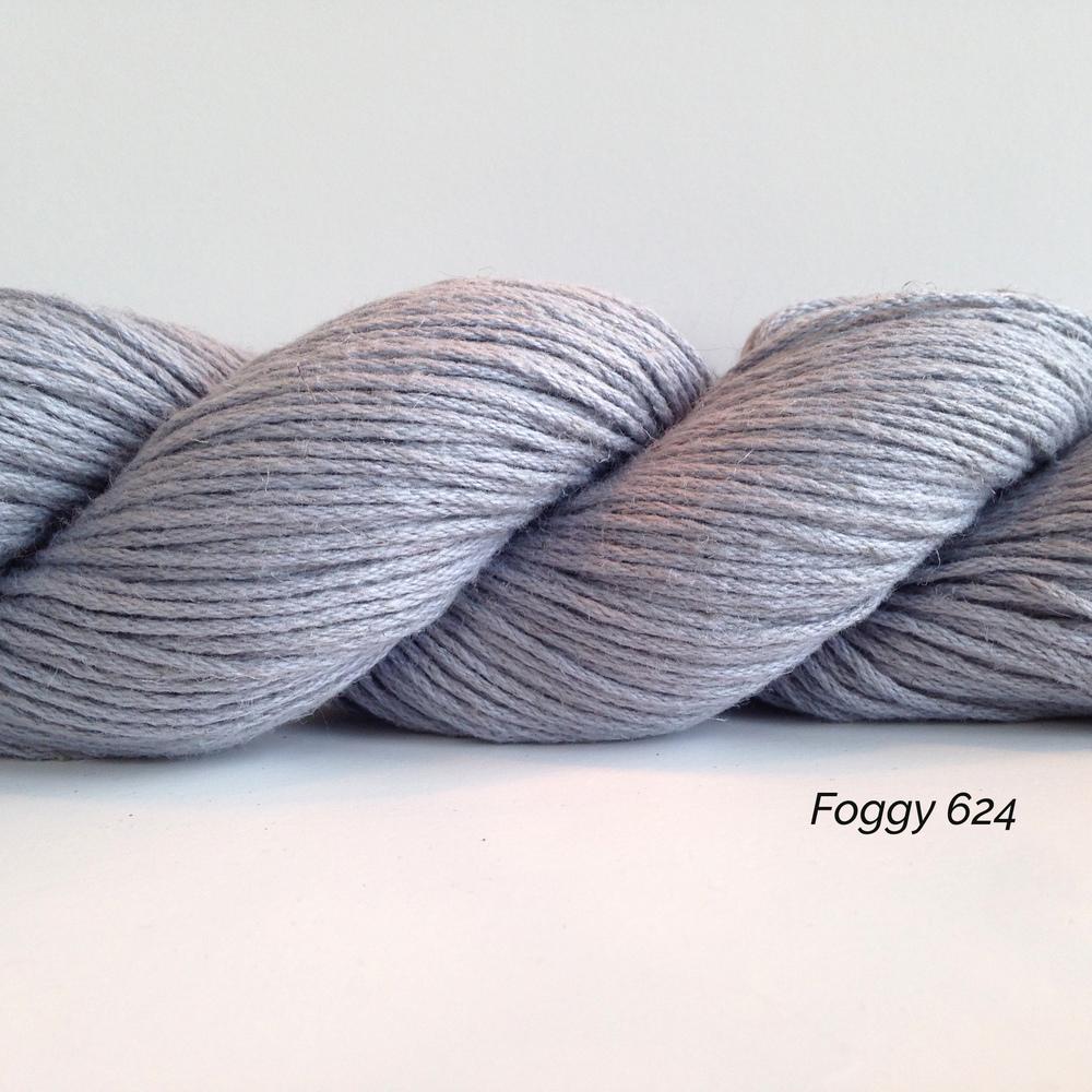 SH00624_Foggy.JPG