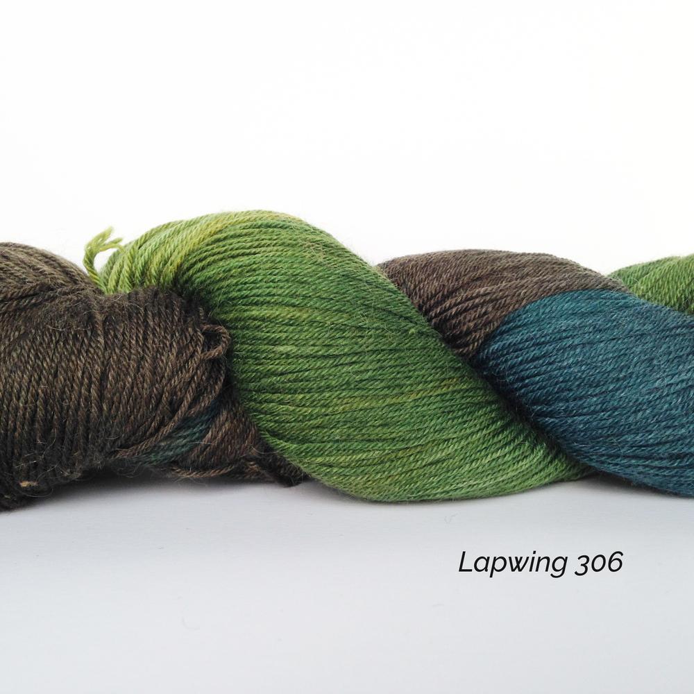 SH306 Lapwing.jpg