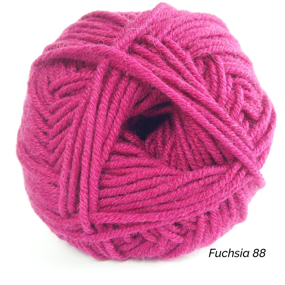 Fuchsia 88.jpg