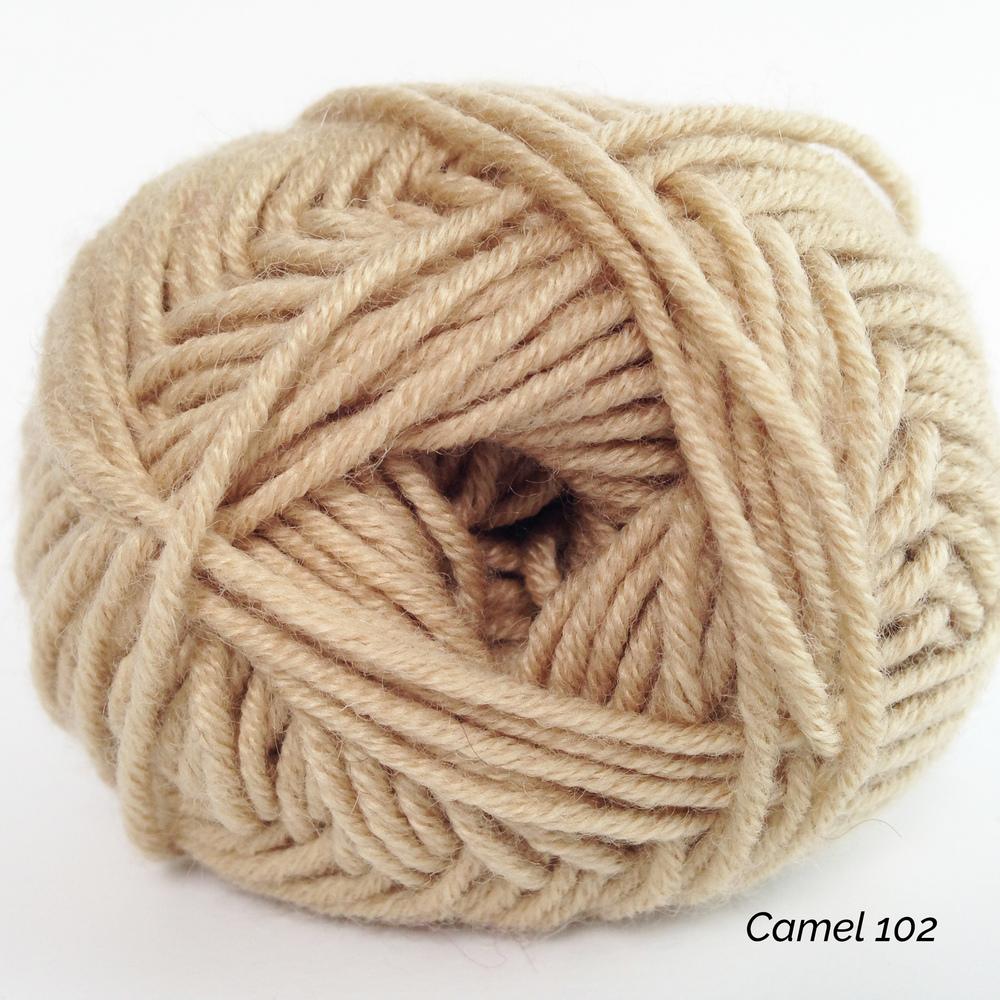 Camel 102.jpg