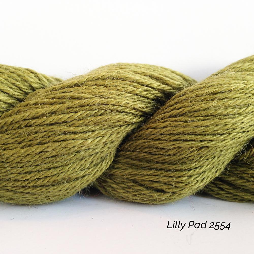2554 Lilly Pad.JPG