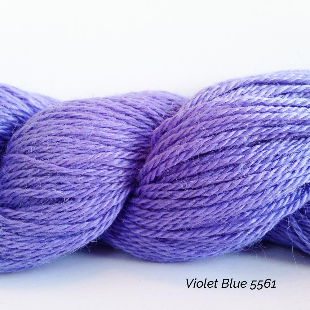 5561 Violet Blue.JPG