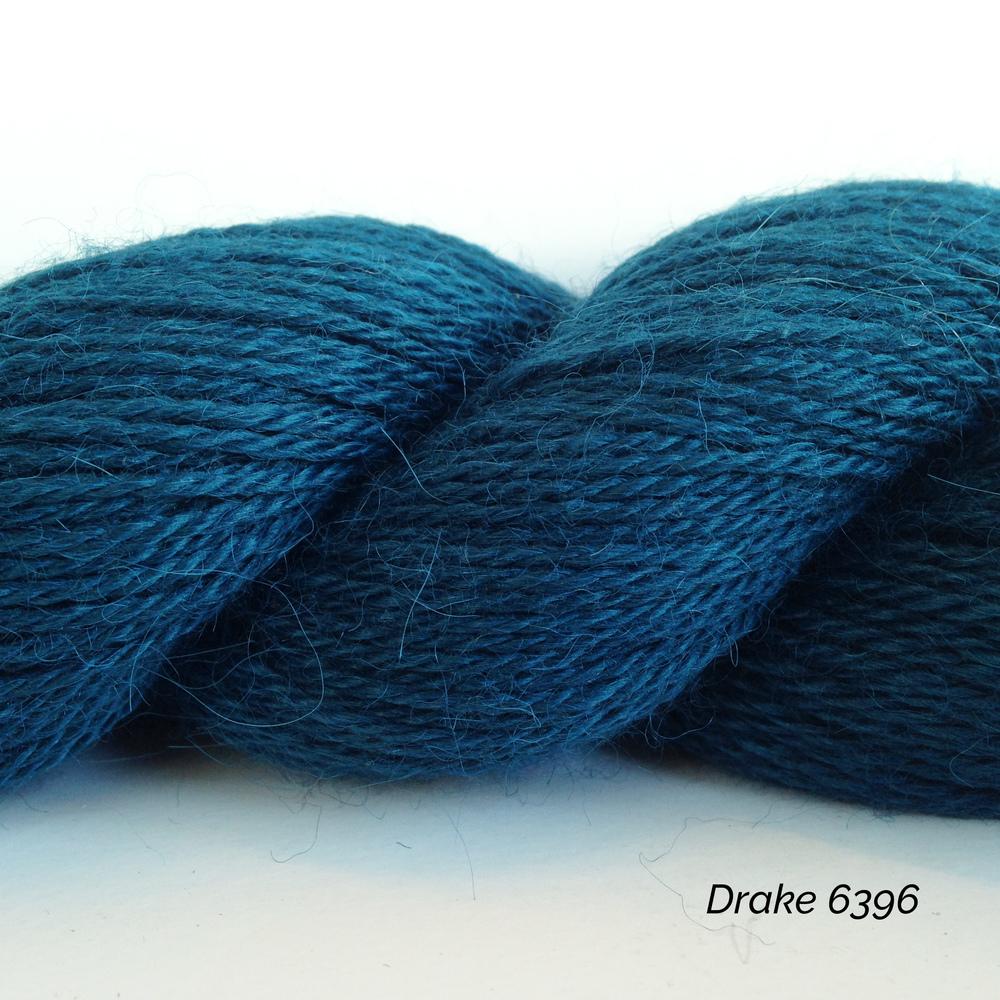6396 Drake.JPG