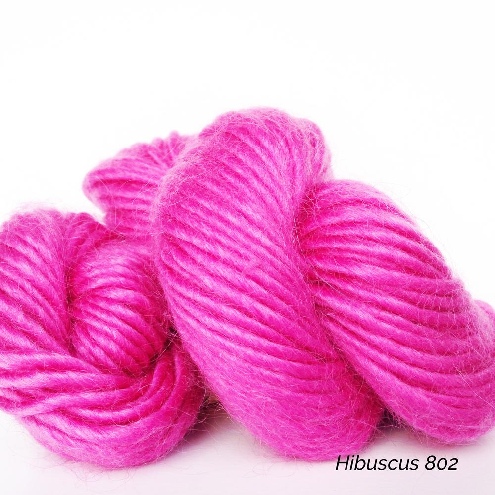802 Hibiscus.JPG