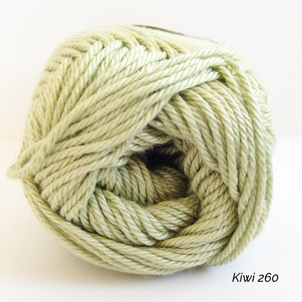Kiwi 0260.JPG