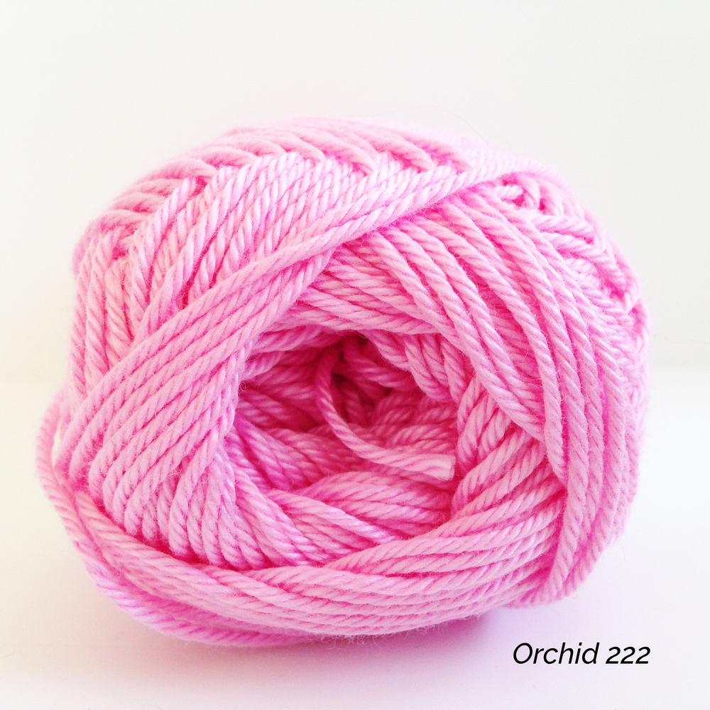 Orchid 0222.JPG
