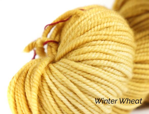 Winter Wheat.jpg
