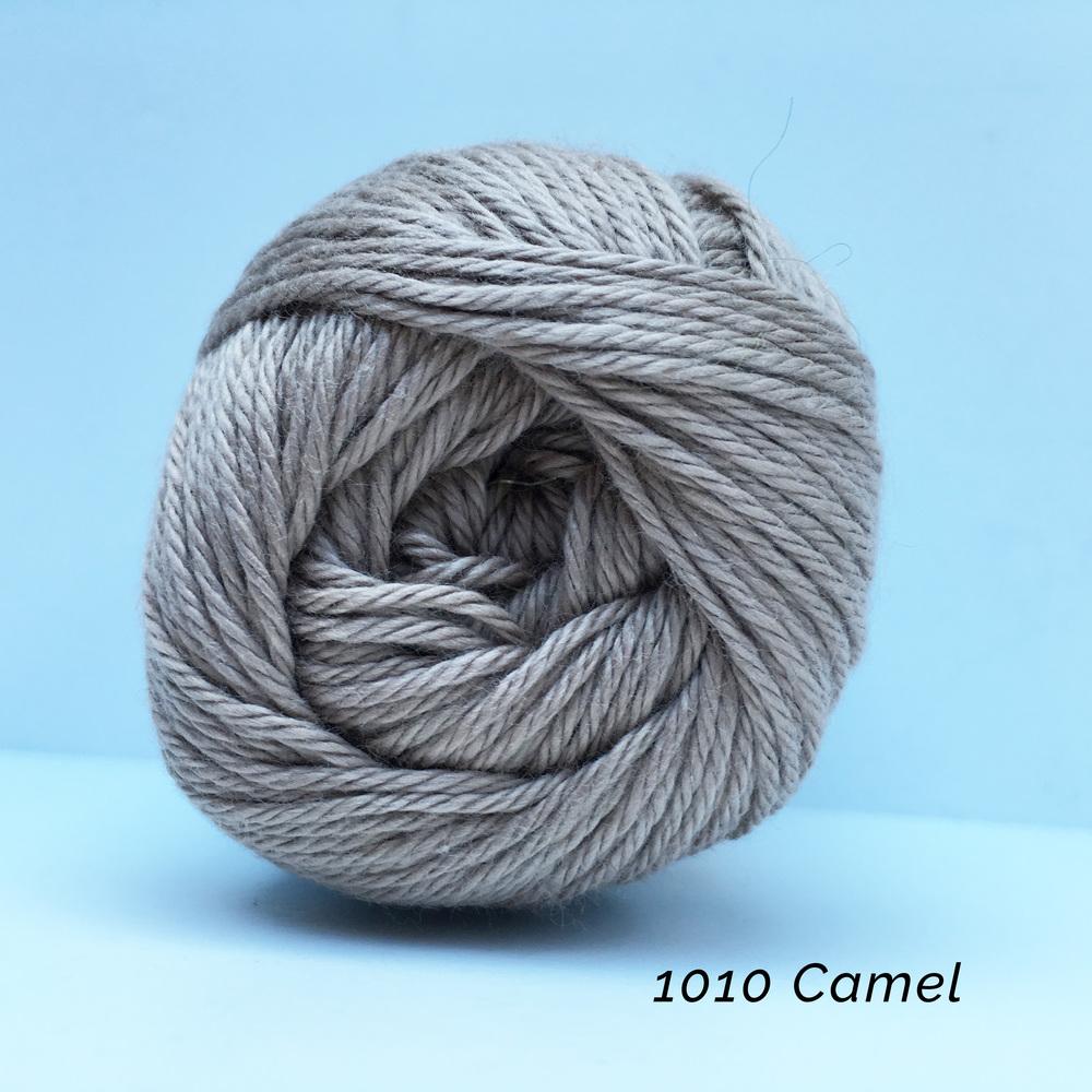 1010 Camel.jpg