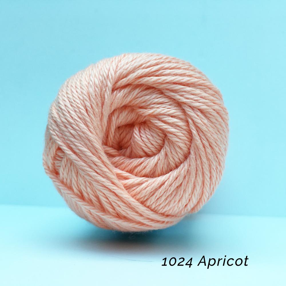 1024 Apricot.jpg