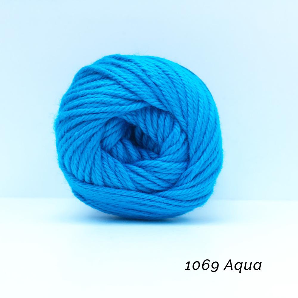 1069 Aqua.jpg