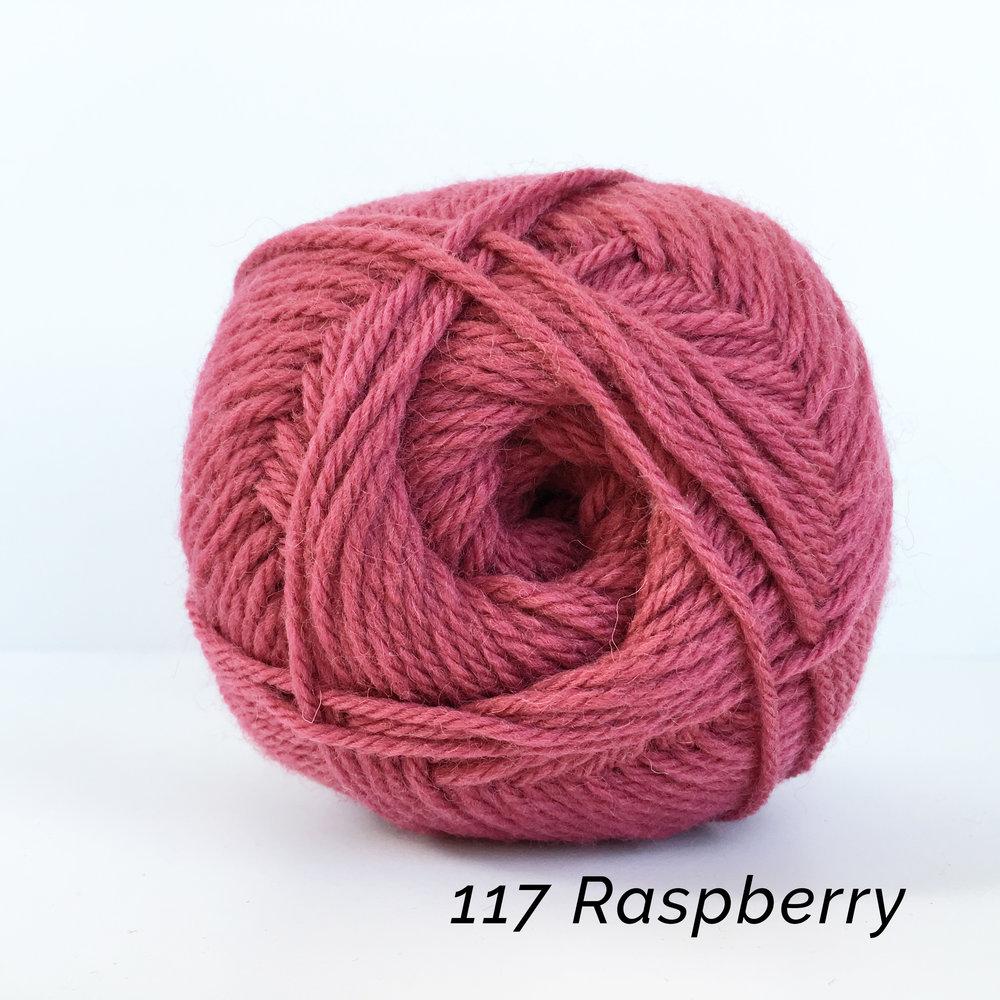 _117 Raspberry.JPG