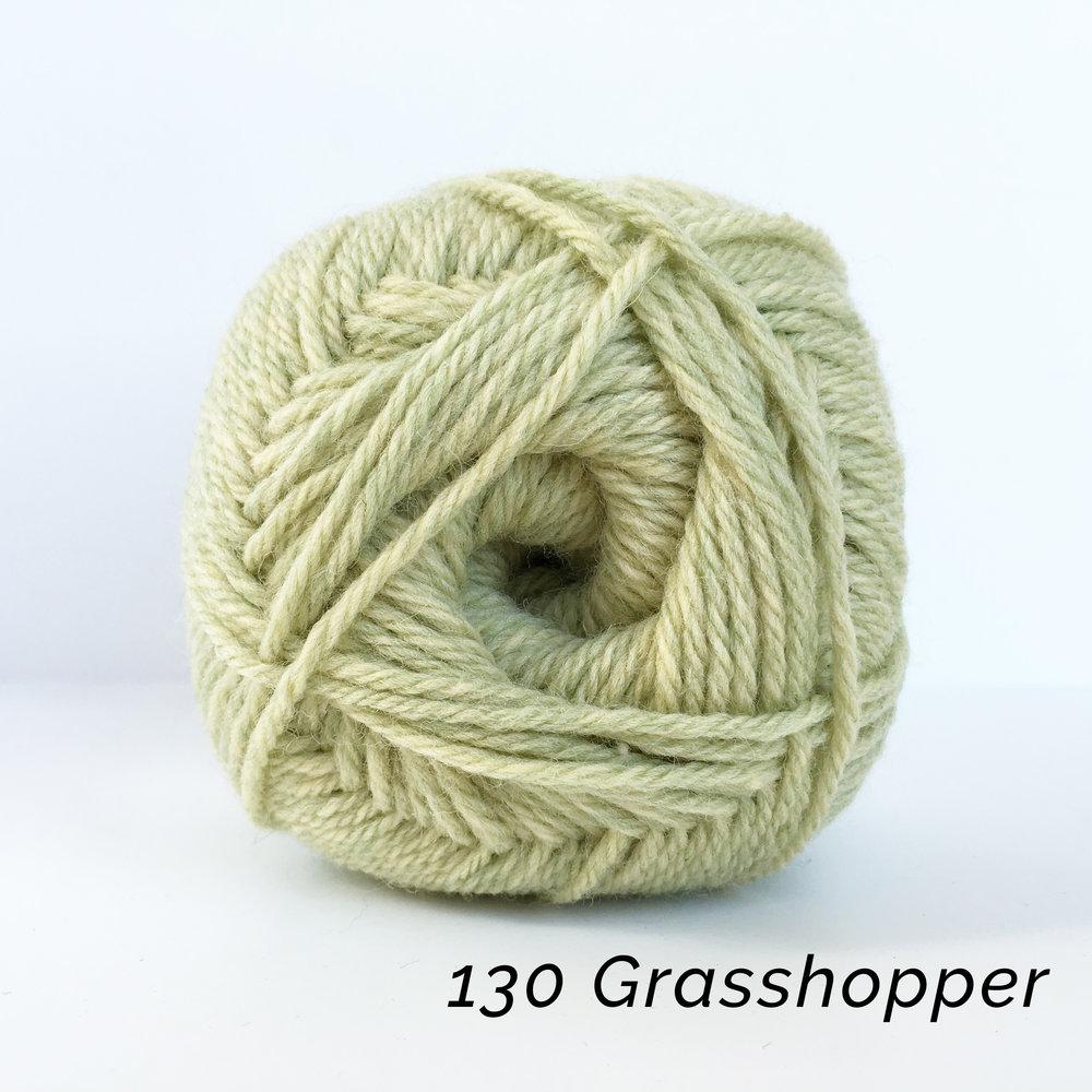 _130 Grasshopper.JPG
