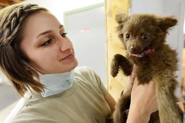 veterinary-practice-loans.jpg