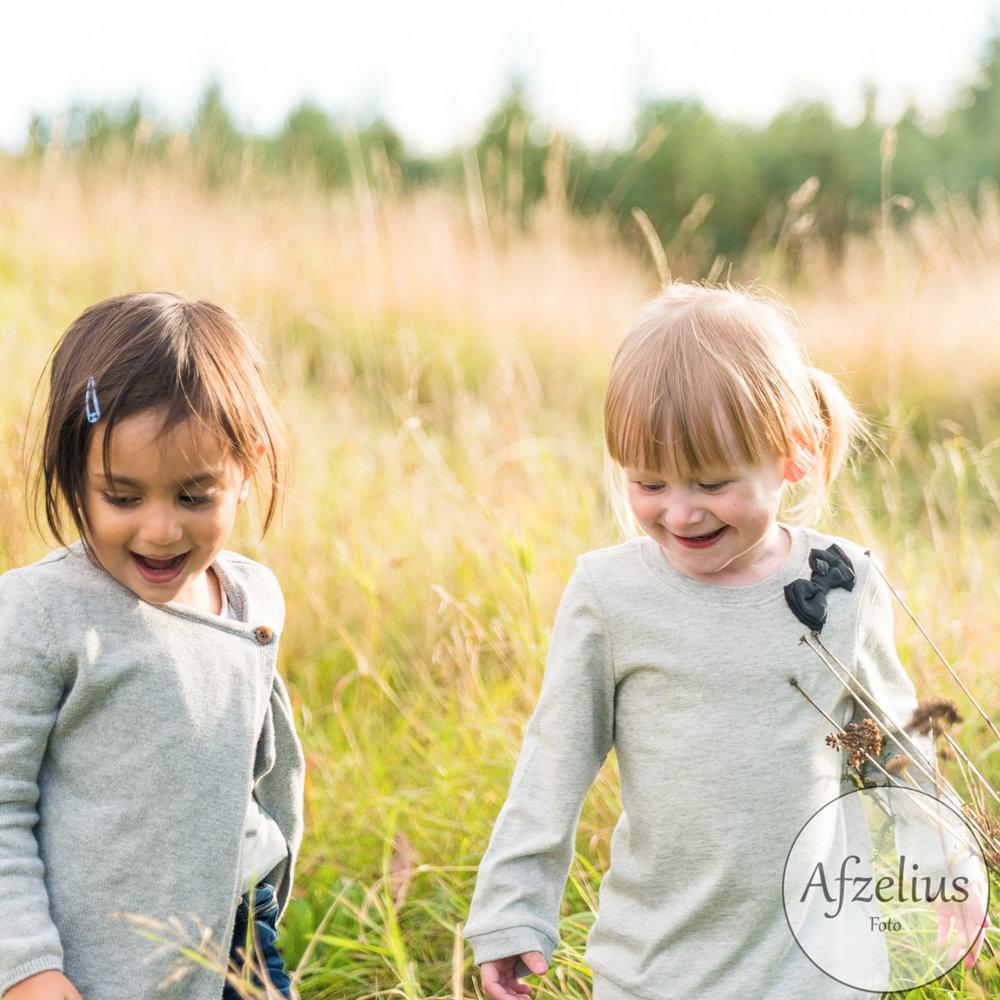 Bästa vännerna matchar med en grå tröjor vid denna fotografering