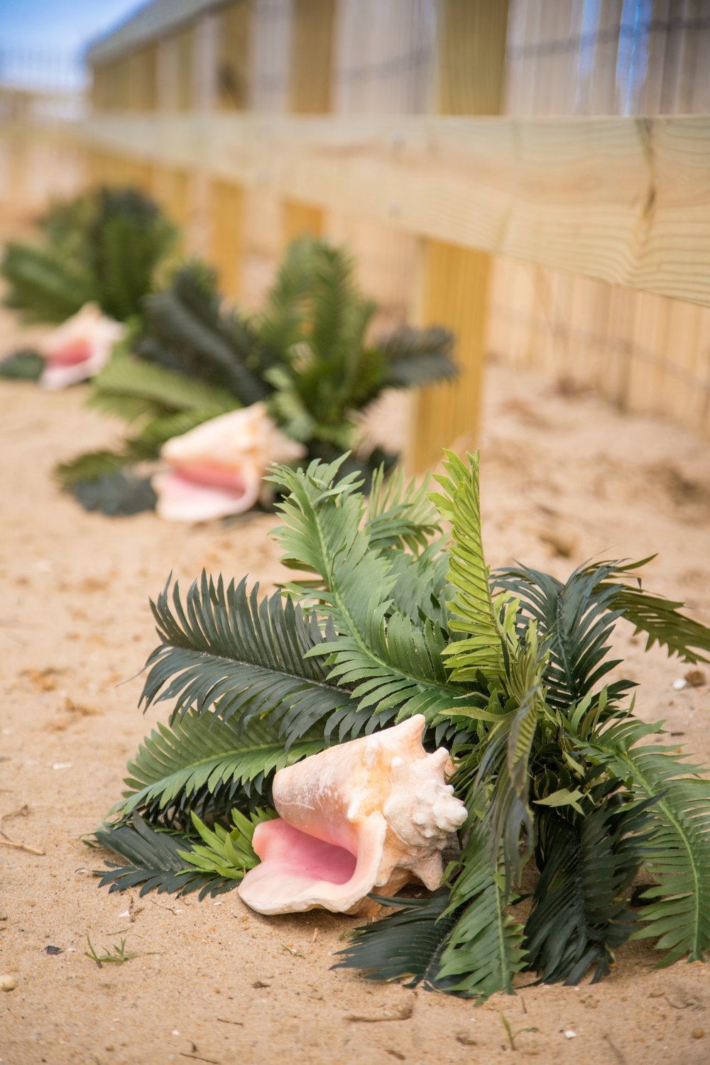Simple yet elegant shells and plants line the path to the wedding site on the beach in Fenwick Island De.