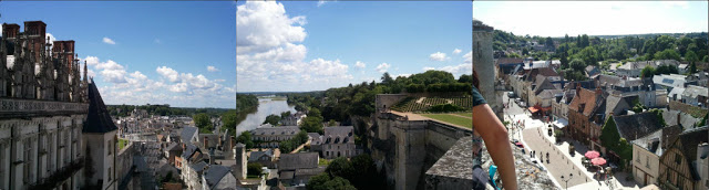 Amboise-View