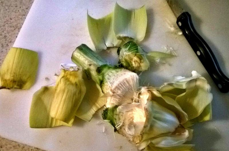 artichoke-fail