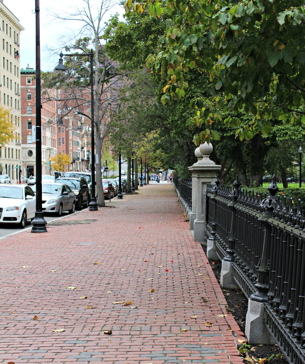 Boston Common 2.0.jpg