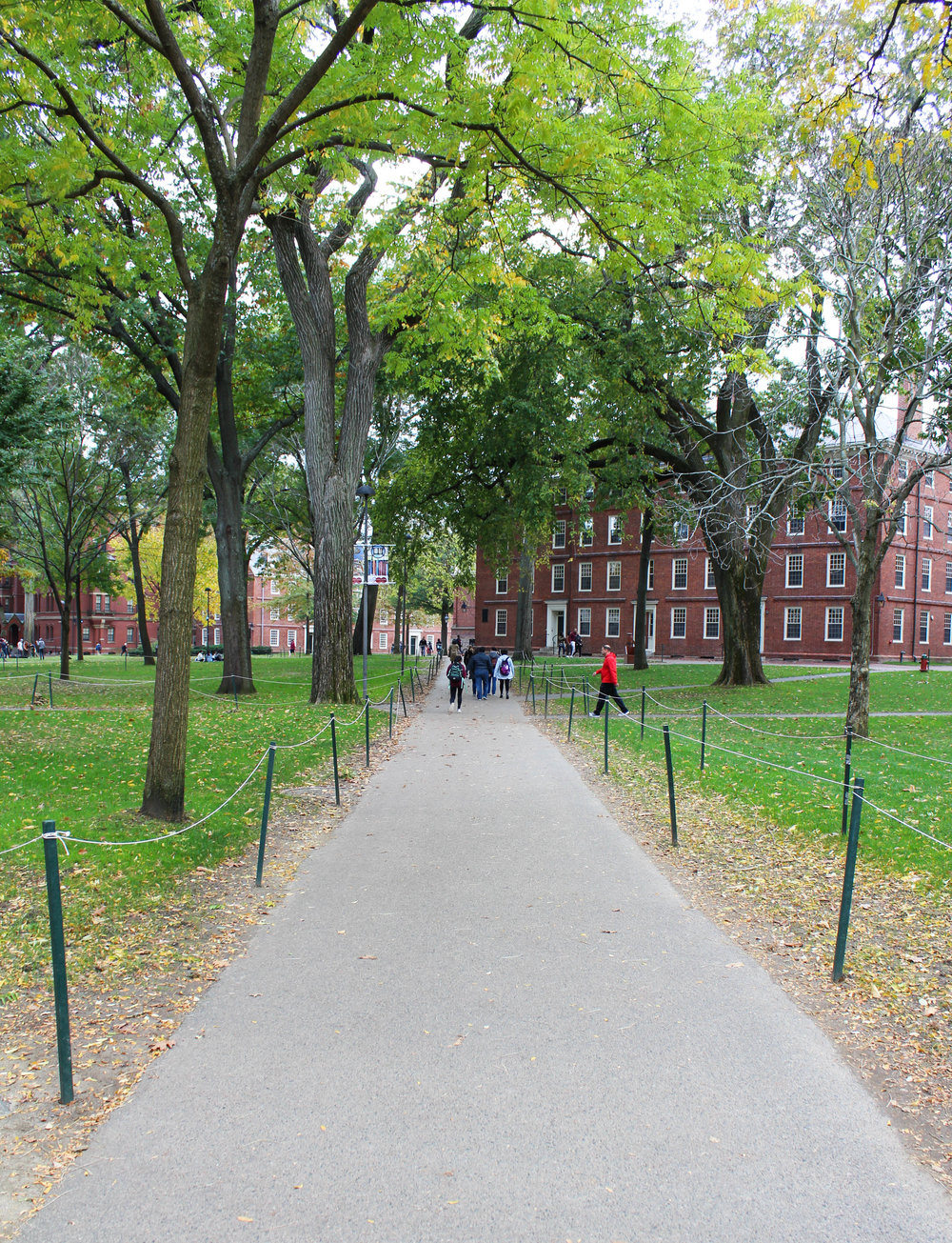 Harvard - Cambridge 5.0.jpg
